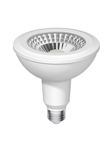 High Output Energy Star LED PAR38